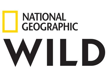 Afryka w listopadzie w National Geographic Wild